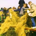 Elever från Nya Stenskolan i Malmö på studiebesök på KC-Ranch