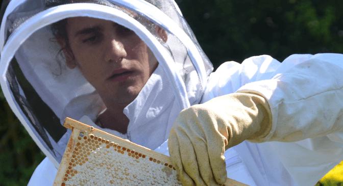 Biodlingskurs vårterminen 2016