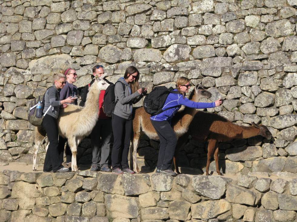 Volontärer i Peru